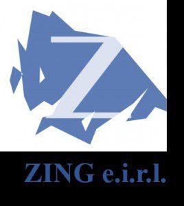 Zing eirl
